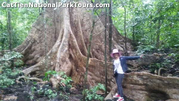 2 days Cat Tien National Park tour